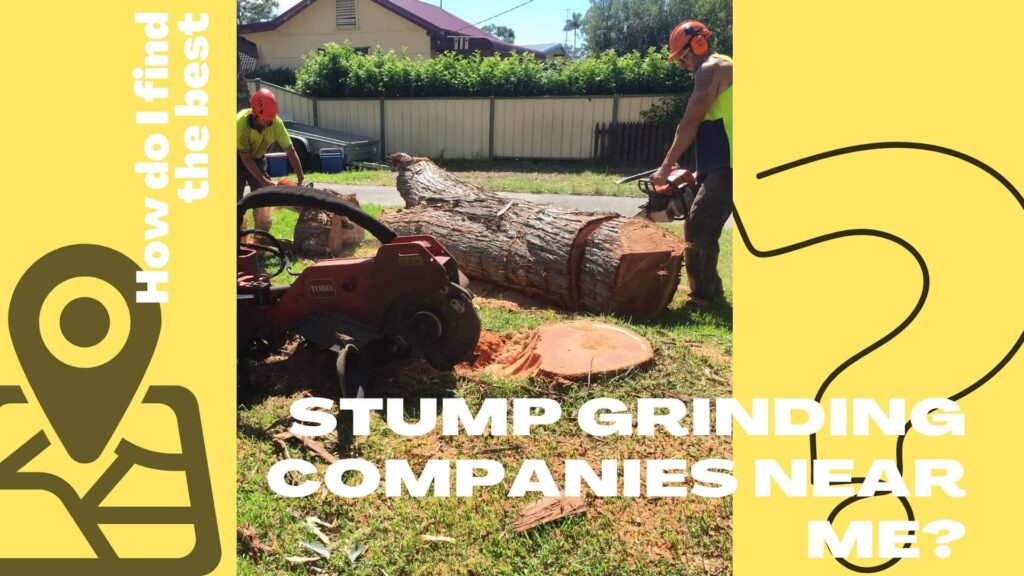 How do I find the best stump grinding companies near me
